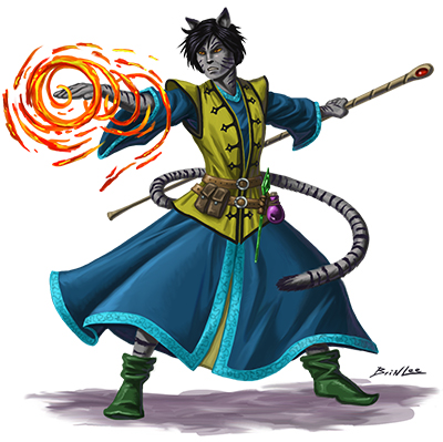 cat guy mage color